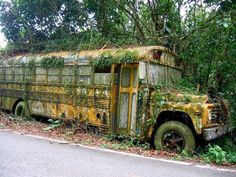 Abandoned School Bus on the side of the road in Puerto Rico. Photo by Estelle Lavie. by itsabandoned Abandoned Cars, Abandoned Buildings, Abandoned Places, Abandoned Vehicles, Abandoned Library, Puerto Rico, Old School Bus, School Buses, Foto Art