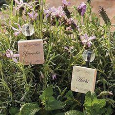 Garden Marker Ceramic Tiles - Beans - Frontgate