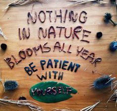 Nothing in nature blooms all year. Be patient with yourself.