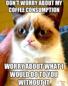 EspressoOutlet.net Blog: Don't Worry About My Coffee Consumption - Worry About What I Would Do to You Without It!