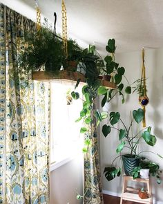 "312 Likes, 6 Comments - Erin {Clever Bloom} (@cleverbloom) on Instagram: ""This is my favorite part of my home. My husband made this hanging shelf for me and it's really…"""