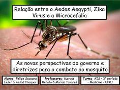 Relação entre o Aedes Aegypti, Zika Virus e a Microcefalia As novas perspectivas do governo e diretrizes para o combate ao...