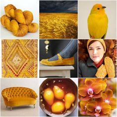 Sources: TFA Amber Label inSaffron,wheat,finch,vintage rug,shoes,Pemba,sofa,poached pears,orchid.