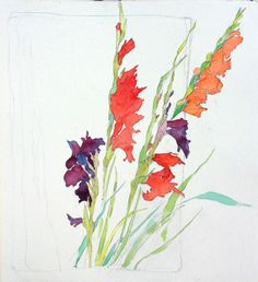 Gallery For > Gladiolus Pencil Drawing Watercolor Cards, Watercolor Flowers, Watercolor Paintings, Watercolors, Flower Paintings, Watercolor Tattoo, Botanical Illustration, Watercolor Illustration, Gladiolus Flower