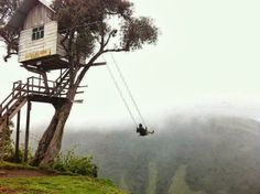 tree house with the greatest swing ever I want to go there !!!!!!!!!!!!!!!!1 Would love to swing here..