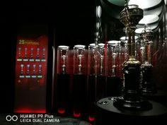 Taças de Portugal no Museu do Benfica Cosme Damião