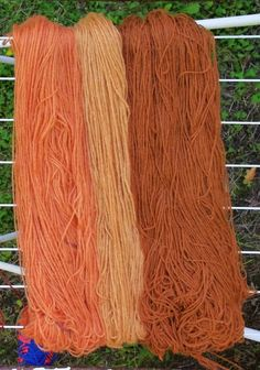 Kellastuneet kielonlehdet antavat kauniin värin villalankaan ja nyt niitä löytyy runsaasti metsästä.Kielon lehdet voi kuivata ja käyttää niitä vasta seuraavana vuonna, jos ei syksyllä innostu värjäämään. Keräsin kielonlehdet edellisenä syksynä vanhaan pyykkikoriin ja annoin niiden odotella vanhan