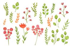 Watercolor Flowers, Floral Clipart by swiejko on Creative Market