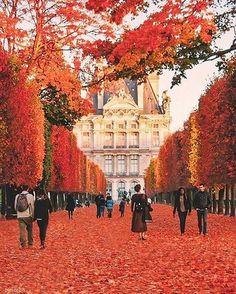 The Red Season, Tuileries Garden, Paris, France // Paris Pictures, Paris Photos, Cool Places To Visit, Places To Travel, Travel Destinations, Amazing Destinations, Tuileries Paris, Paris In Autumn, Hello France