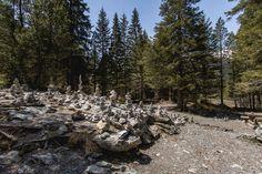 Haslital & Brienzersee: 7 Ausflugstipps rund um Meiringen-Hasliberg Baker Street, Grindelwald, Switzerland, Mountains, Nature, Travel, London Apartment, Black Forest, Road Trip Destinations