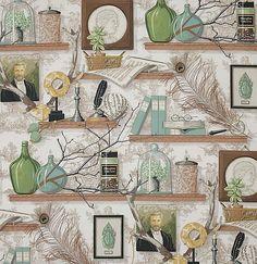 Cabinet Of Natural Curiosities Wallpaper