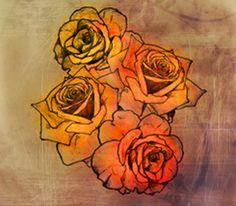 Sunrise Roses