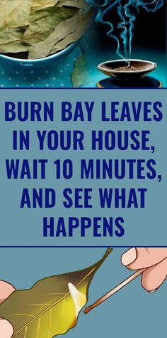 Burn bay leaves in your house wait 10 minutes and see what happens Wellness Tips, Health And Wellness, Health Tips, Health Fitness, Women's Health, Fitness Tips, Honey Benefits, Turmeric Health Benefits, Health Remedies