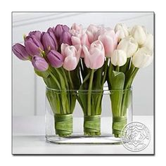 Wedding Ideas - Tulips : Brides: Bright Bouquet with Yellow Tulips. A romantic bouquet with white-and-pink garden roses, yellow fringed tulips, and astilbe, created by PassionFlower. Tulips Flowers, My Flower, Fresh Flowers, Flower Power, Planting Flowers, Beautiful Flowers, White Tulips, Pink White, Purple Tulips