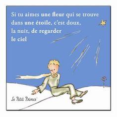 Le Petit Prince » Des citations pour la Fondation                                                                                                                                                                                 Plus