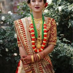 nepali girls search for wedding