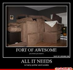 A real fort LOL fort of awesome, i love!!