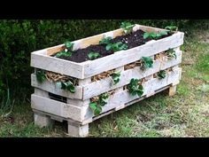 Best way to grow strawberries! See the many ways of growing strawberries in containers, strawberry planters and grow strawberries in pots Strawberry Planters, Strawberry Garden, Strawberry Fields, Diy Pallet Projects, Garden Projects, Pallet Ideas, Woodworking Projects, Pallet Designs, Pallet Crafts