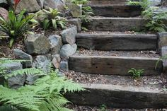 in love with the sleepers for steps (succulent landscaping rocks) Succulent Landscaping, Hillside Landscaping, Landscaping With Rocks, Backyard Landscaping, Landscaping Ideas, Backyard Patio, Inexpensive Landscaping, Landscaping Retaining Walls, Garden Stairs