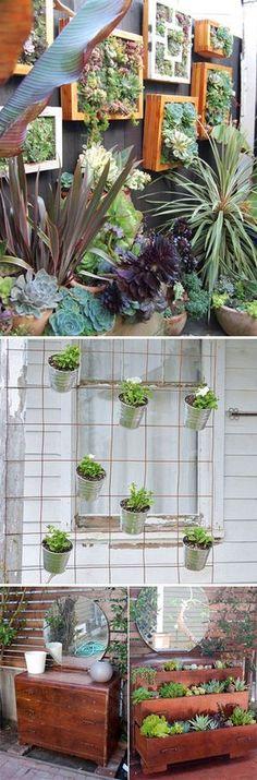 Go Vertical! DIY Gardens for Small Spaces