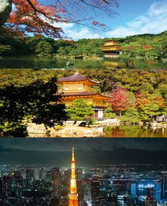 Famous for its thrilling ultra-modern cities, Japan is also home to some of the world's most stunning areas of natural beauty, where cherry blossoms and hydrangea bloom in spring and maple trees blaze fiery red hues across the land in autumn.