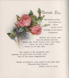 Carol Anne's Boutique: Pink Roses