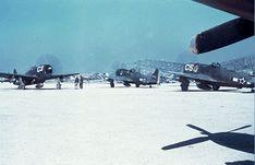 Primeiro Grupo de Aviação de Caça brazilian  air force .
