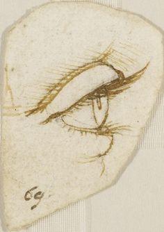 Leonardo da Vinci  An eye in profile  c.1490 Pen and ink