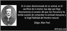 En el amor desinteresado de un animal, en el sacrificio de sí mismo, hay algo que llega directamente al corazón del que con frecuencia ha tenido ocasión de comprobar la amistad mezquina y la frágil fidelidad del Hombre natural. (Edgar Allan Poe)