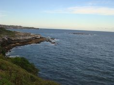 Coogee Beach, Sydney Australia Coogee Beach, Exotic Places, Sydney Australia, World, Water, Travel, Outdoor, Style, Gripe Water
