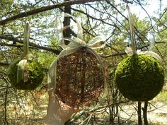 I think we could make these - - form twigs around a beachball ???