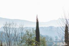 Poppi Italy, Tuscany, Italy Travel Photos, Toronto Photographer Italy, Destination Wedding, Poppi Wedding, Wee Three Sparrows #weethreesparrows #travel #italy #tuscany #poppi #destinationwedding