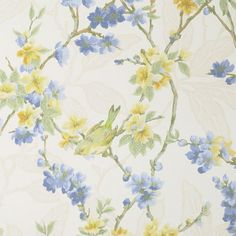 Birdsong Wallpaper Wallpaper of small birds on blue and yellow blossom on off white background