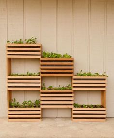 Small Backyard Garden Ideas & Tips ~Family Food Garden Vertical Vegetable Gardens, Vertical Garden Diy, Vertical Planter, Vegetable Gardening, Vertical Plant Wall, Veggie Gardens, Small Backyard Gardens, Outdoor Gardens, Big Backyard