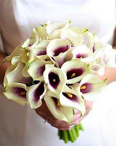 Calla lily bouquet.