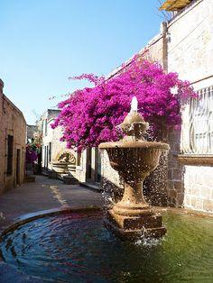 """CALLEJÓN DEL ROMANCE. El Callejón del Romance es una pintoresca callecita en Morelia a tan sólo unos metros del Acueducto y la Fuente de las Tarascas con una entrada enmarcada por frondosas camelinas y en el centro del callejón un par de bellas fuentes, es un lugar lleno de tranquilidad. Caminando a lo largo de esta calle podrás leer versos del poema """"Romance de mi Ciudad"""", de Don Lucas Ortiz, que ostenta en sus muros y por el cual se le dio el nombre de Callejón del Romance."""