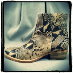 So in love with this Fred de La Bretonière pair of low boots in snake print. Great design for Summer 2015, and true soles for a soul ! #sosophie #sosophieleuven #sophiedecoster #leuven #belgium #belgië #wandelingstraat #fashion #mode #clothes #kleding #damesmode #womanfashion #design #designers #designersclothes #styling #ontwerpers #freddelabretoniere #leather #shoe #shoes #snake #solesforasole @freddelabretoniere
