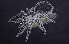 Pardon My Dust: The Chalk Art of Peter Han