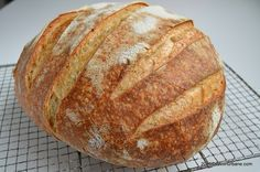 No Knead Parmesan and Black Pepper Bread - whisk & whiskers Cracked Black Pepper, No Knead Bread, Dry Yeast, Sweet Bread, Health And Nutrition, Parmesan, Oven, Vegetarian, Stuffed Peppers
