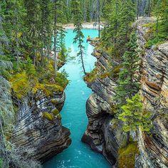 Athabasca Falls, Alberta - Canada