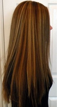 Long Hair with slight layering, Honey Highlights with Medium Golden Brown Low Lights. Love it :)