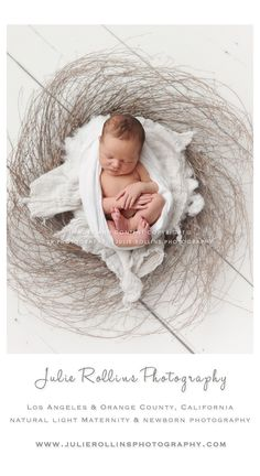Newborn Photography | Los Angeles Newborn Photographer | Nest | Newborn Photos  | Julie Rollins Photography  http://www.julierollinsphotography.com https://www.facebook.com/julierollinsphotography