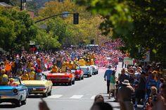 Petaluma National Little League Parade