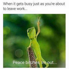 Work funnies                                                                                                                                                     More