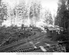 Clemons Logging Company railroad logging camp near Melbourne, ca. 1930 - Kinsey Brothers Photographs of the Lumber Industry, - University of Washington Digital Collections Logging Equipment, Heavy Equipment, Timber Companies, Garden Railroad, Forest Pictures, University Of Washington, Felder, Train Car, Historical Photos