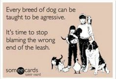 Say no to breed specific legislation!