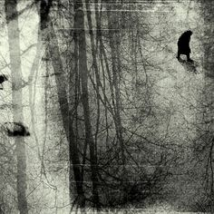 Flickr | spiritualblue