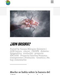 Descubre el término más oscuro de la genética Movie Posters, Amor, Genetic Disorder, Human Genome, Natural Selection, Dark Matter, Film Poster, Billboard, Film Posters