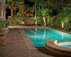 Our pool is green at this time. You may have a pool or hot tub built, so that is easily accessible to your family members. Once you choose the decking about your pool, there are a number of crucial considerations… Continue Reading → Pools For Small Yards, Backyard Ideas For Small Yards, Small Swimming Pools, Backyard Pool Designs, Small Backyard Landscaping, Swimming Pool Designs, Backyard Patio, Landscaping Ideas, Tropical Landscaping