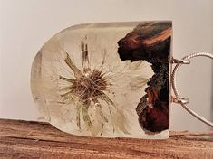 clear resin pendant with Juniper wood and Dandelion fluff, resin with Dandelion fluff, nature pendant,wood with resin jewelry Juniper Wood, Picture Necklace, Shops, Good Manufacturing Practice, Etsy Shop, Clear Resin, Resin Pendant, Little Star, Resin Jewelry